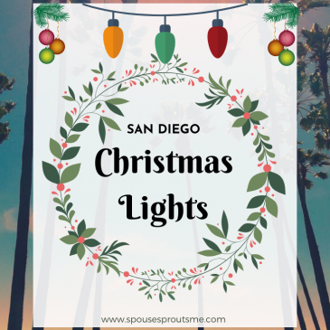 San Diego Christmas Lights - www.sprousesproutsme.com